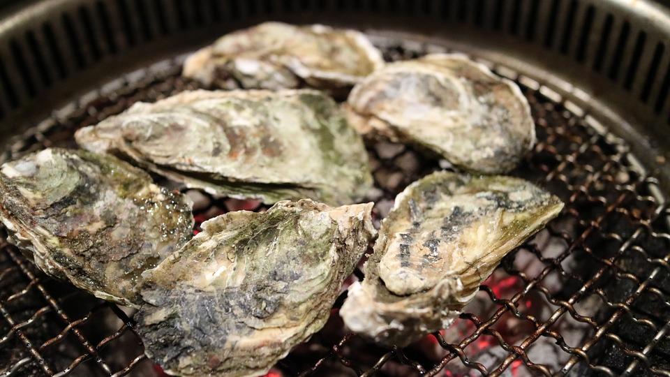 台灣貝類含塑膠微粒,還能吃嗎?環保署:營養價值大於危害,勿恐慌