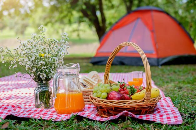 6f0c9d95 picnic basket with food red white checked cloth field 1418 2039