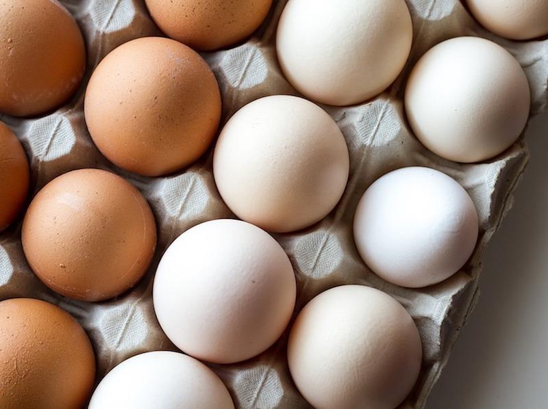 褐色的蛋跟白色的蛋,到底差在哪裡?